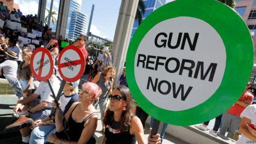 Gun reforms